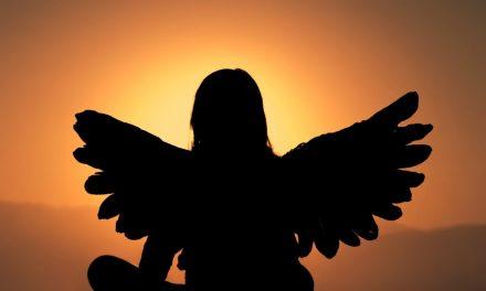 Van berenjacht naar engelennacht